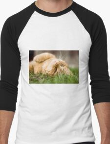 Cute cat Men's Baseball ¾ T-Shirt