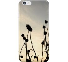 Thorn Sunset iPhone Case/Skin