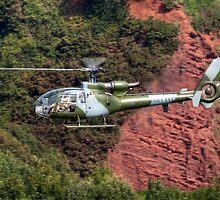 Royal Marines Gazelle by © Steve H Clark Photography