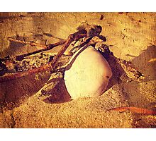 Love shells Photographic Print