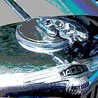 Jaguar Hood Ornament by Tina Hailey