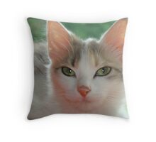Dreamy Shiver Throw Pillow
