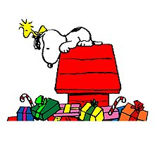 Snoopy and Gifts Photographic Print