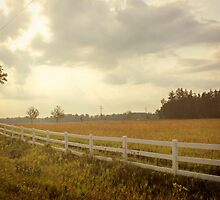 Country Drive by ArchetypePhoto