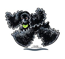 Black Cocker Spaniel Airtime Photographic Print