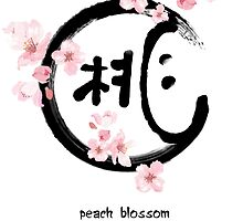 【2800+ views】Peach Blossoms with Chinese Calligraphy by Ruo7in