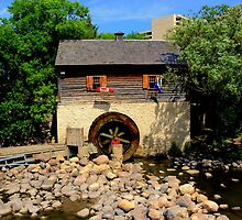 Grant Cuthbert Old Mill by Larry Trupp