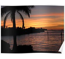 Palms at sundown Poster