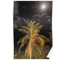Full Moon over Tropical Palm Poster