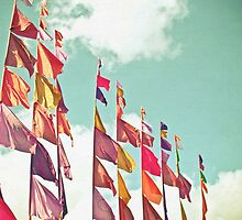 Flags by Cassia Beck
