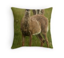 Deer Say's Hello Throw Pillow