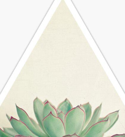 Echeveria Sticker
