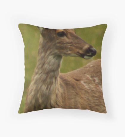 Deer Bust Portrait Throw Pillow