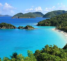 Trunk Bay, St. John USVI by Roupen  Baker