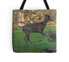 Running White-Tailed Buck Tote Bag