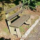 Bench At Freeman Park by Sinclere