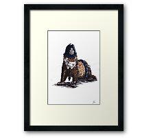 police ferret Framed Print