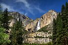 Yosemite Falls - Yosemite N.P, California, USA by Sean Farrow