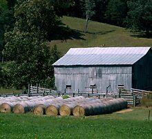 An Organized Farmer      ^ by ctheworld