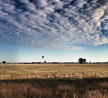 Hot Air Rises by Fiona Kersey