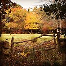 New England Fall Farm Scene by Larry Glick