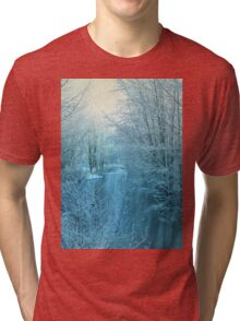 Winter River Tri-blend T-Shirt