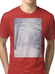 Winter Path Tri-blend T-Shirt