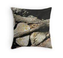 Imprisoned Rocks Throw Pillow