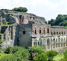 Pompeii Excavations by Trish Meyer