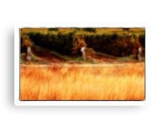 Summer Vineyard Glow Canvas Print