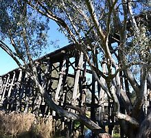 Pyalong trestle bridge by diamonddays