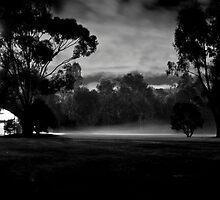 Hays Paddock by Ruben D. Mascaro