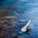 Corona in a creek by Ruben D. Mascaro