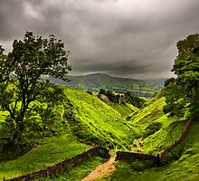 In England's green and pleasant land by Darren Burroughs