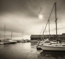 Toronto Harbourfront by Steve Silverman