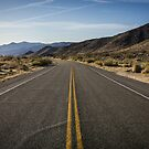 Desert Road, Joshua Tree by Philip Kearney