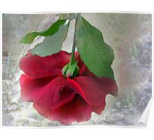 When the world seems in a jumble ... stop and smell a rose! Poster