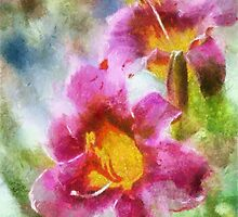 Orchidee by Roland Richter