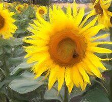 Sonnenblume by Roland Richter