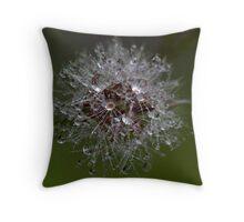little garden-galaxy xiv Throw Pillow