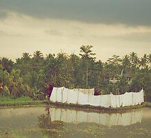 A Rice Field in Ubud by Valerie Rosen