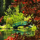 At Big Springs by Barbara  Brown