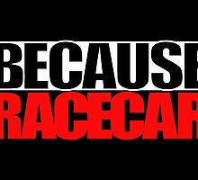 Because Racecar by ApexFibers