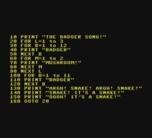 Badger Ad Infinitum - Amber on Black Terminal by M. Dean Jones