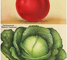 Wholesome 1913 seed catalog art: Early Detroit Tomato and Copenhagen Market Cabbage by gumbogirlonline