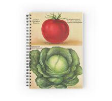 Wholesome 1913 seed catalog art: Early Detroit Tomato and Copenhagen Market Cabbage Spiral Notebook