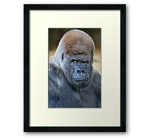 Who do you think you are? Framed Print