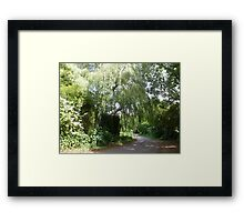 road sceen Framed Print