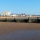 sea side 2 by damion pomfrett