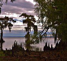Calm Lake by jasmith162